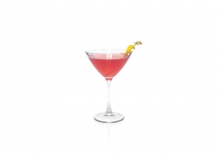 10oz Drinkwise®  Martini