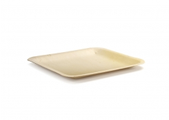 "10"" Square Servewise®  Plate"