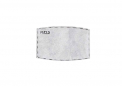 Reusable Mask Replacement Filters - Bag of 2