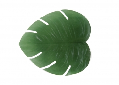 "18"" x 16"" Philodendron Leaf Placemat"